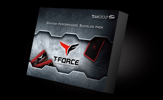 The all new gaming style heat spreader from DARK PRO interprets the high speed spirit of the T-Force series perfectly.