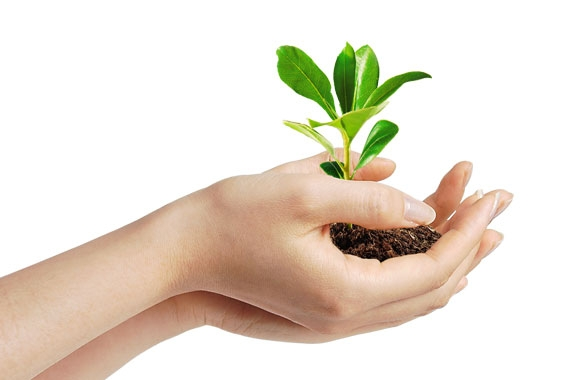 Contribute in helping the planet with aneco-friendly product